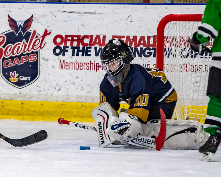 2019-02-03-Ryan-Naughton-Hockey-69.jpg