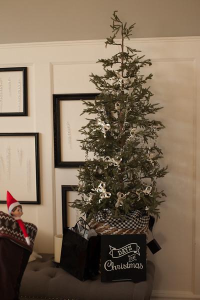 Bethany christmas RAW (223 of 360).JPG