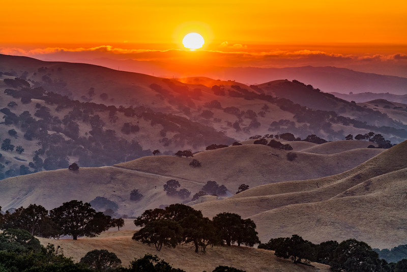 Sunset at Del Valle 7 (1 of 1).jpg
