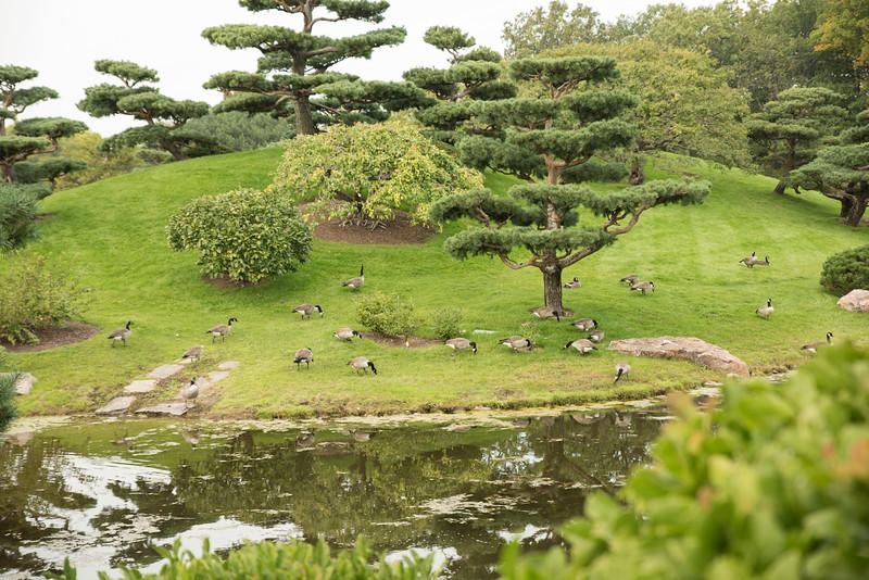 Chicago Botanic Garden 099.jpg