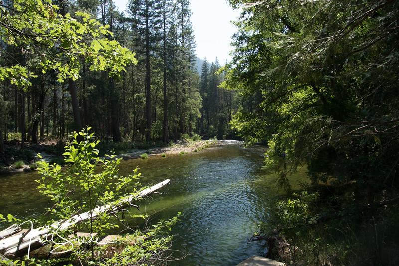 Yosemite 2018 -105.jpg