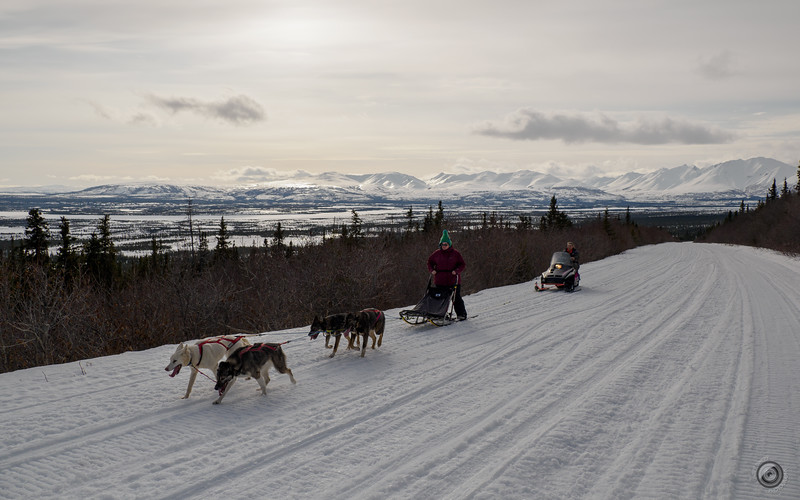 20190325_Blaire_and_Liz_Mushing_50.jpg