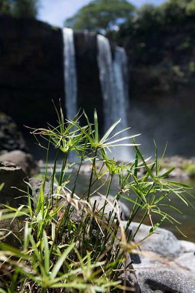 kauai landscape photography-1-14.jpg