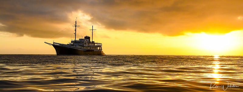 2018 Lobos Island-44.jpg