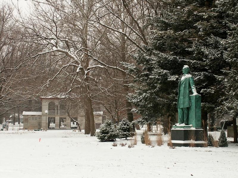 Carle Park Winter