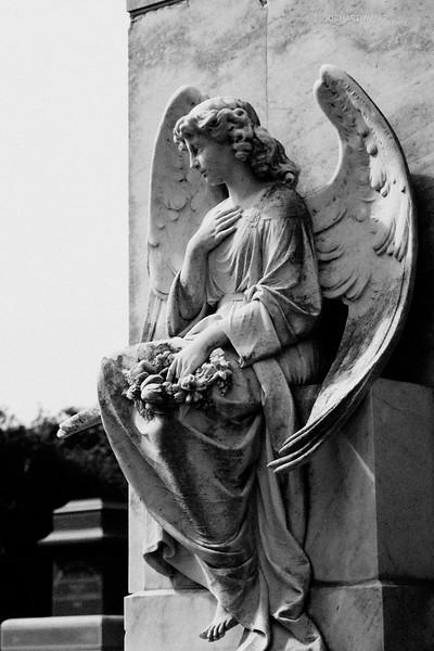 Angels of Colma