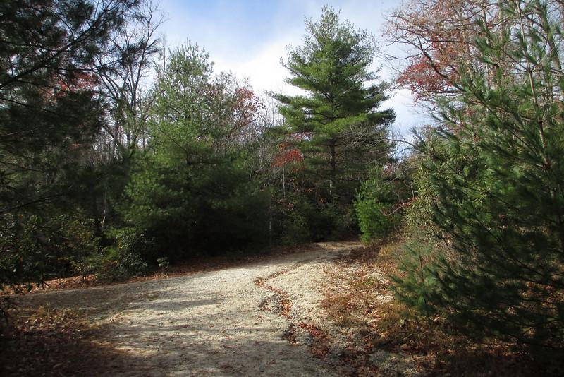 Panthertown Valley Trail - 3,840'