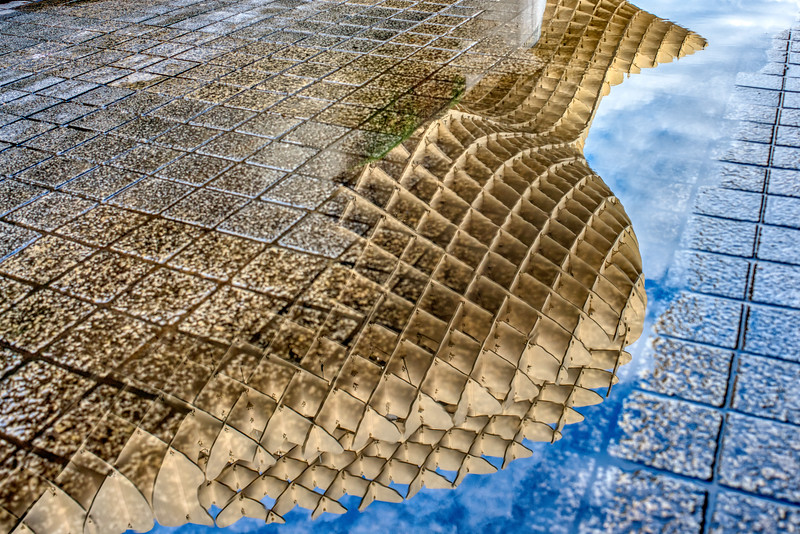 Metropol Parasol structure reflected on a rain puddle, Seville, Spain