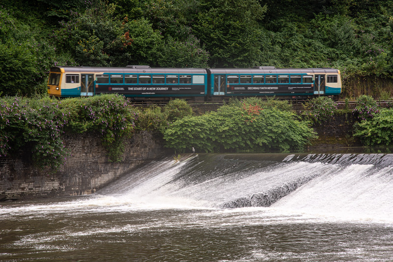 Pacer train and heron at Radyr