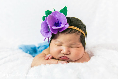 Gwynevieve's Newborn Photoshoot