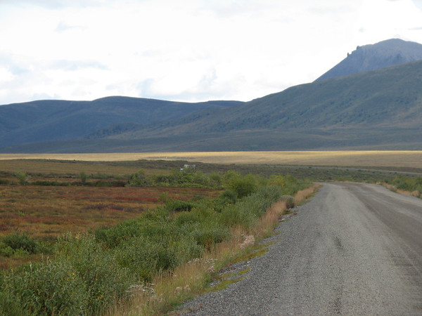 Dempster Highway / Tombstone Park