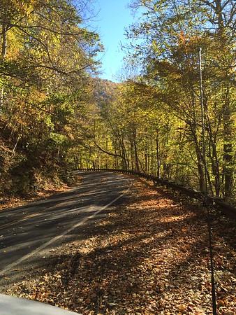 Blue Ridge Parkway Fall 2015