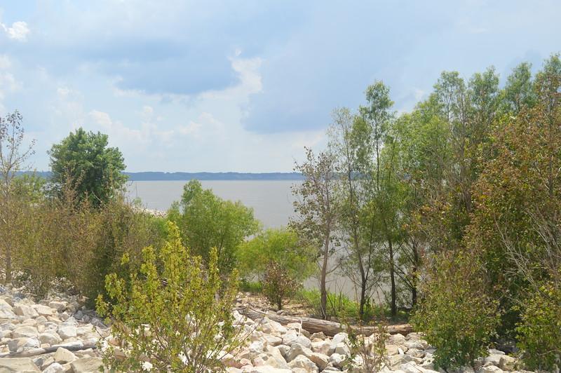 151 Mississippi River.jpg