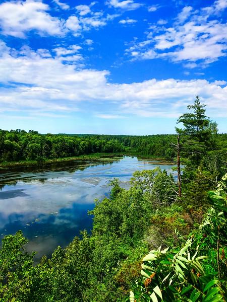 ottawa valley maple adventures shaw woods.jpg