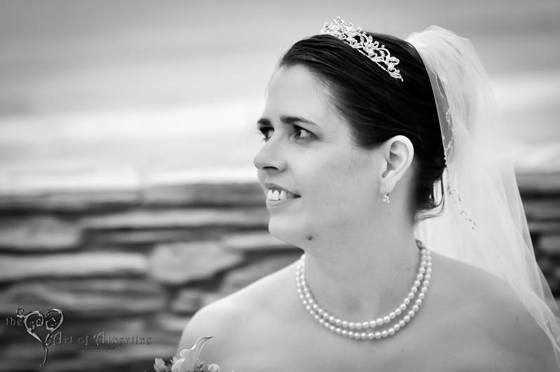 Wedding - Laura and Sean - D90-1443.jpg