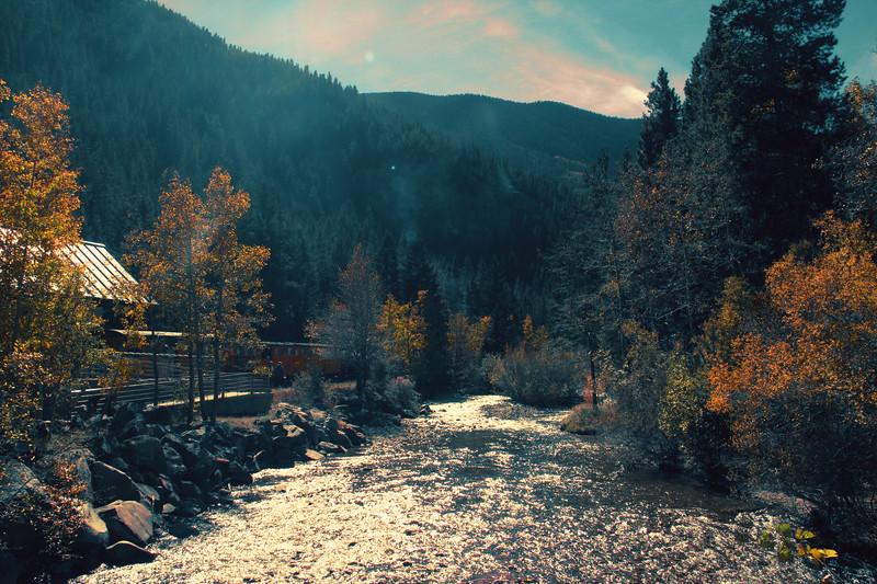 bosque-colorado-jorge-sarmiento-photography-video-newark-new-jersey-ecuador-IMG_4354.jpg