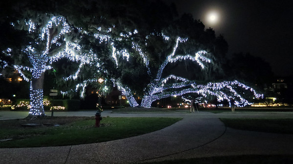 December 25:  Christmas lights in the Historic District .  .  .