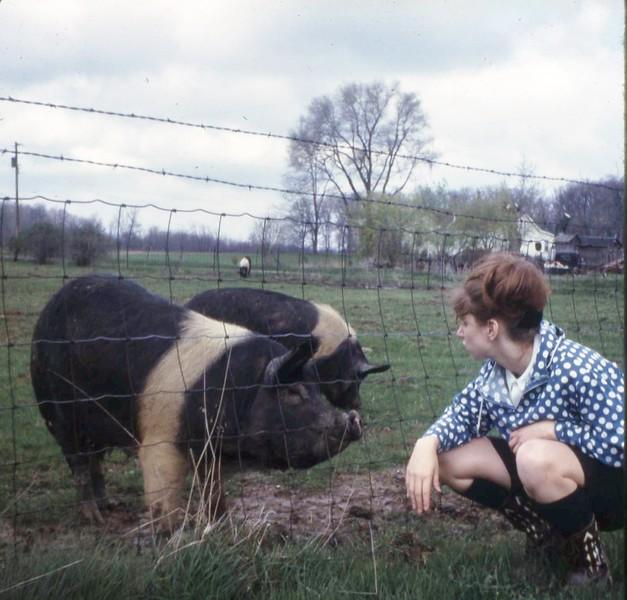 Miss Seward's pig with Peggy Hageman '65