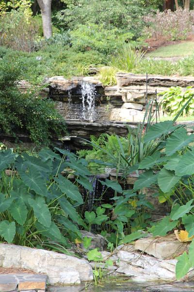 waterfall at koi pond