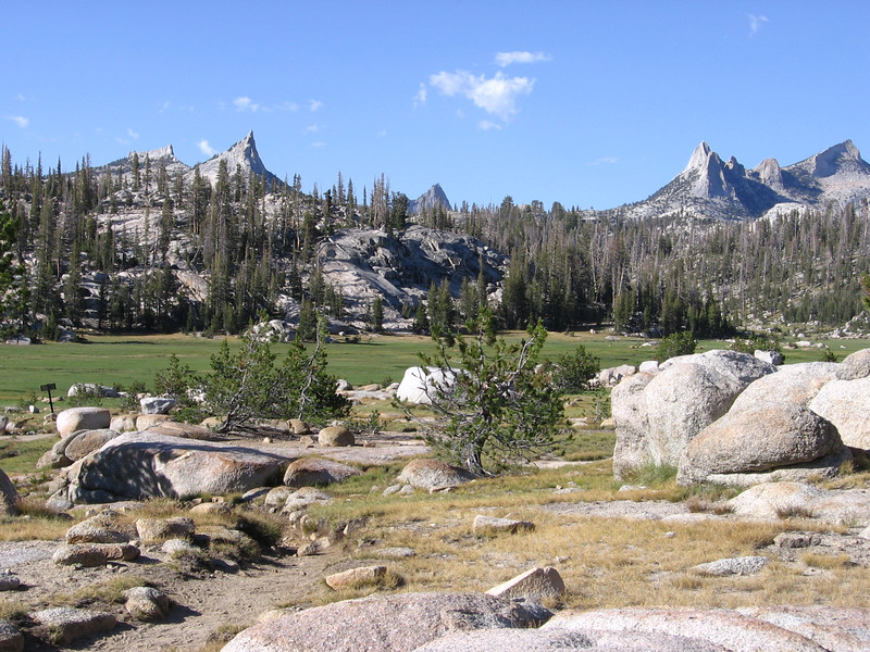 Meadow by Sunrise High Sierra Camp. Cathedral Peak is the multi-spired light-colored peak on the horizon toward the right, and Cathedral pass is the low area to its left.