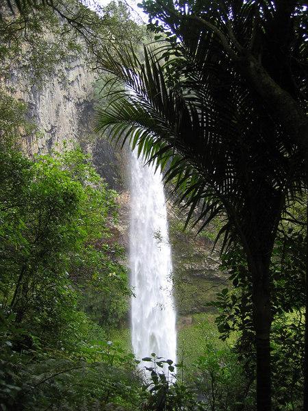 falls_through_the_trees_3.jpg