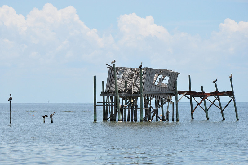 """The historic city of Cedar Key is located on the west coast of Florida just over one hundred miles north of Tarpon Springs.  Named after the Cedar trees in the area once used for the manufacture of wood pencils it is now more renowned for its fishing, oyster, and clam production.  The """"old island"""" lifestyle makes it a unique place to visit."""