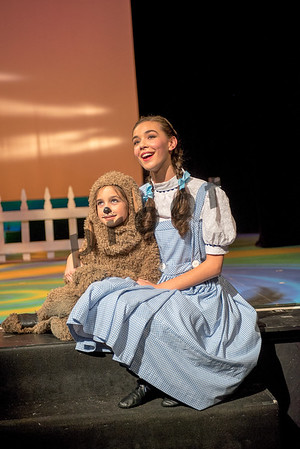 Wizard of Oz -2016