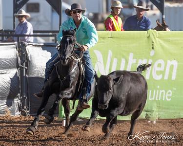 Stallion - Round 1