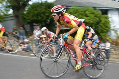 Cats Hill 2005