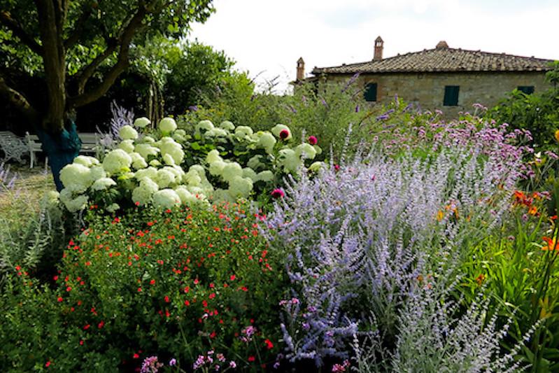 garden-1-1.jpg