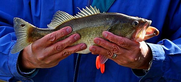 DWLP FIRST FISHING TOURNAMENT - NOVEMBER 2016