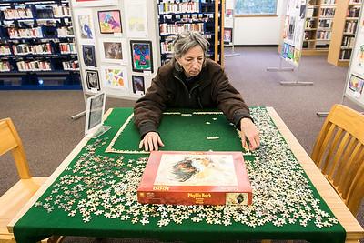 20161229 - Woodstock Library (SN)