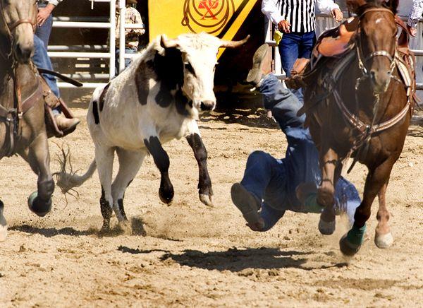 San Dimas Rodeo 11