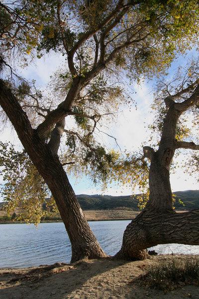 Lake Elizabeth 048-1.jpg