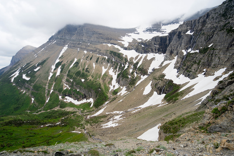 150615_Red_Rock_Falls_to_Swiftcurrent_Pass_9620.jpg