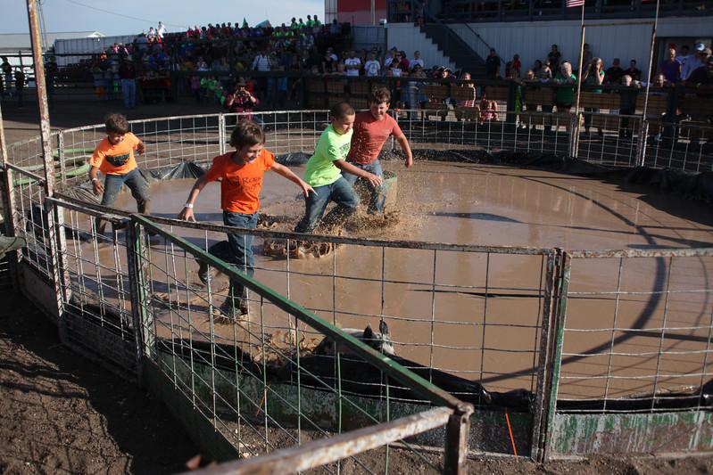 Havre Daily News / Floyd Brandt  Pig Wrestling at Blain County Fair Sunday team Bacon in a Barrel