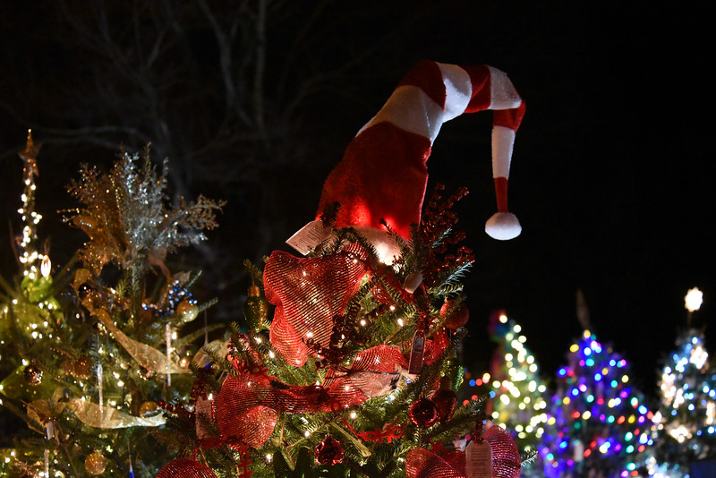 The trees tops in the Rotary Club of Davidson's Giving Village glow on a mild winter's evening. This wonderful fundraiser for local nonprofit organizations in a favorite attraction for young and old visitors alike.