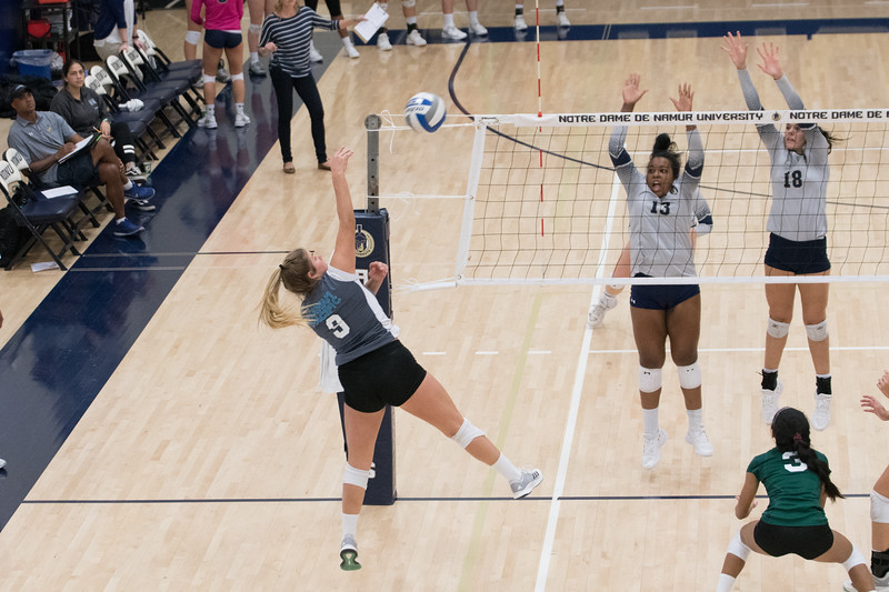 HPU Volleyball-92997.jpg