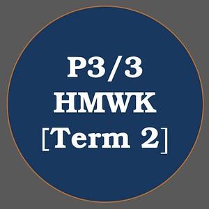 P3/3 HMWK T2