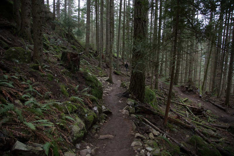 oyster dome-39.jpg