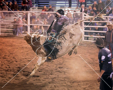 2019 Royal Gorge Rodeo
