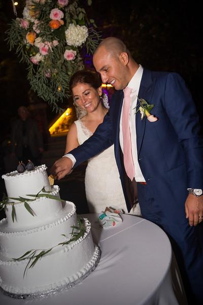 Reception Cake cut0007.JPG