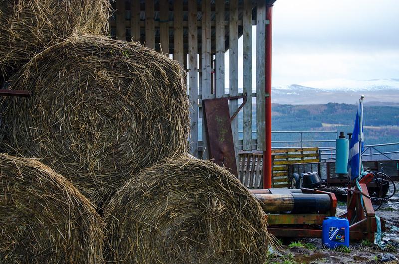 Scotland-Loch-Ness-8624.jpg