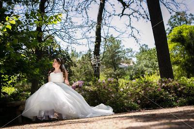 Summer • Bridal Session