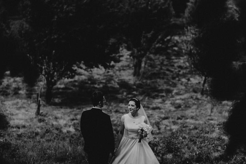 Fotograf nunta Sibiu-46.jpg
