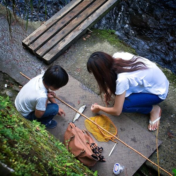 Jouren Falls & Wasabi Garden