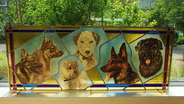 2011_06_10_Glasraam_Honden