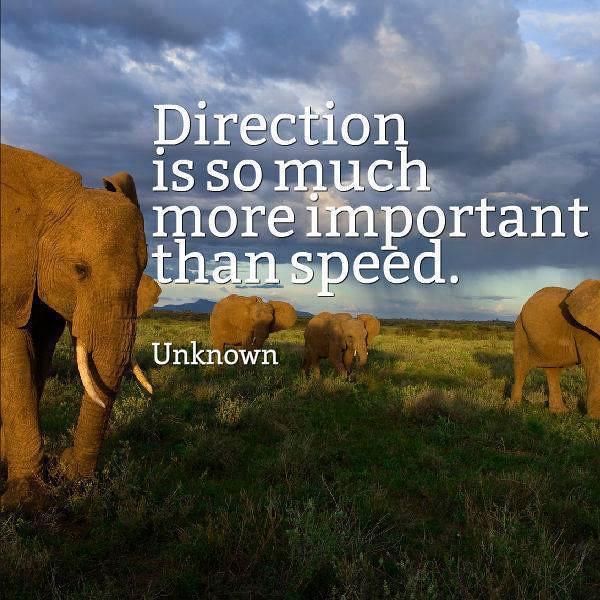 Direction.jpg