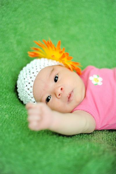 Aliana Newborn Shoot 1 week new