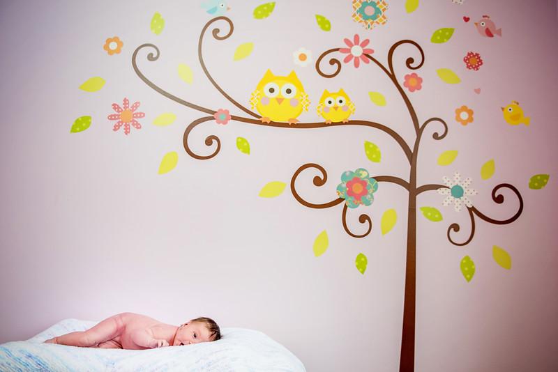 Erica-Agostinelli-newborn-_7507857.jpg